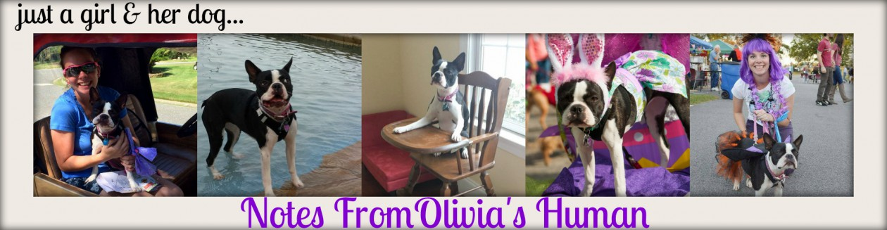 Notes from Olivia's Human
